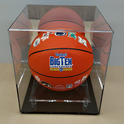 Regulation Size Basketball Case