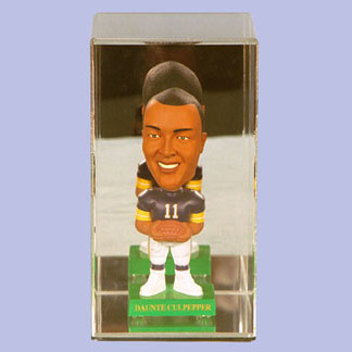 Bobblehead Case